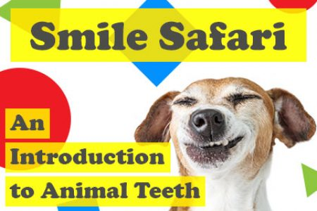 Animal-Teeth